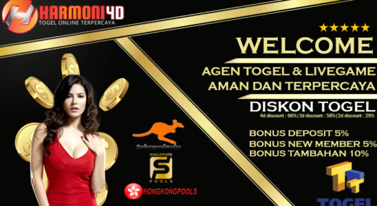 Togel online player